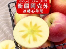 阿克苏冰糖心苹果,郑州冰糖心苹果直销处